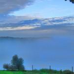 carmel-paysage